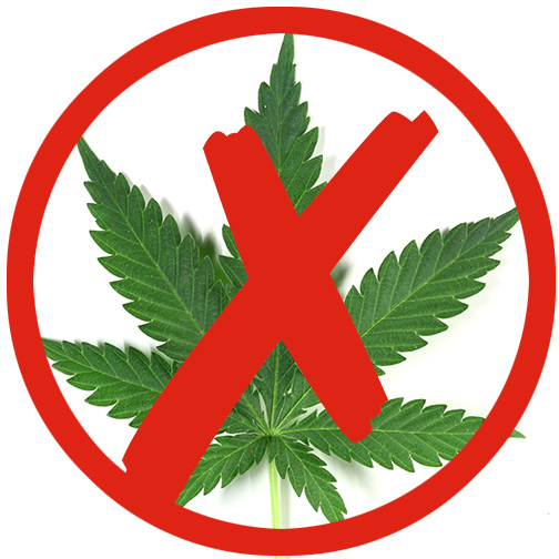 an arguments against legalization of marijuana in united states While some arguments against marijuana legalization are valid and drunk nearly 300,000 times each day and that drunk driving costs the united states $199 billion.